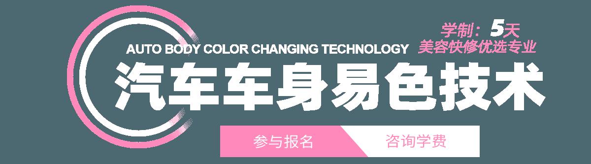汽车车身易色技术